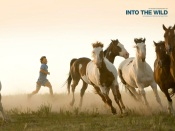 Into The Wild: Run Along With the Herd