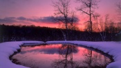Pink and Violet, Sunset