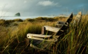 Wooden Chairs on the Coast